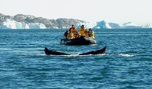 Customers in Arctic Greenland