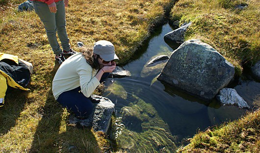 Fresh water from natural springs in Greenland