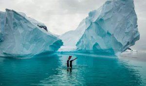 Snorkelling Greg Mortimer