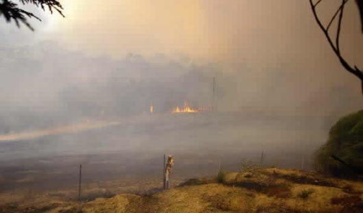 Blaze Aid Fire