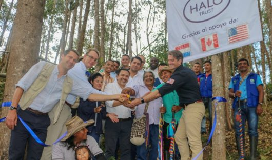 Halo Trust Colombia