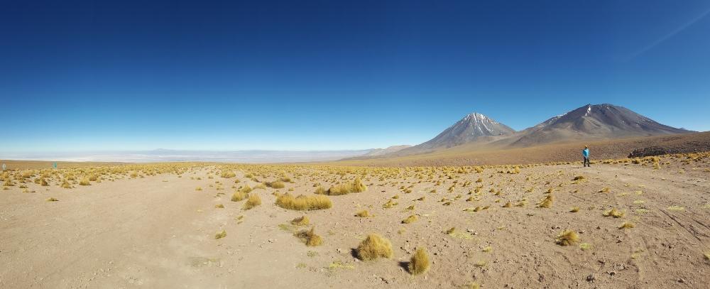 Tara Salt Flats, Atacama by Mary Shiel