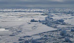 Icy Scenery