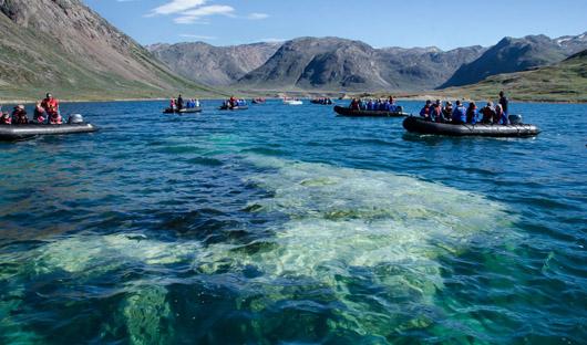 Iceland Pro Cruises - Ikka Fjord