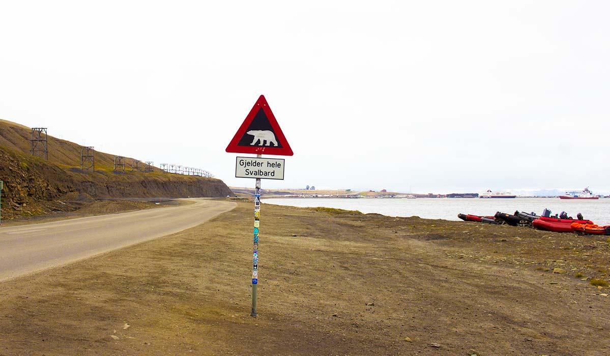 Longyearbyen Polar Bear Sign