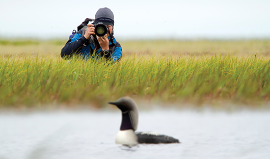 Heritage Expeditions Photographer