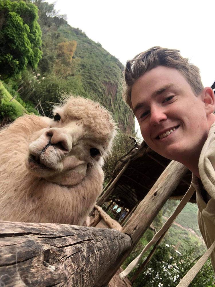 Llama Selfies by Jane Keenan